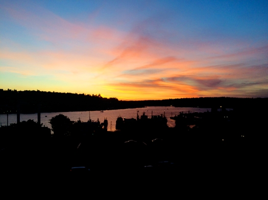 Finally Steve came to see me in Seattle where we saw this amazing sunset over Lake Union walking home from Capitol Hill.