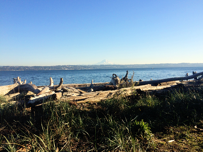 Thanksgiving was spent at a friend's family's house on Vashon Island. The view of Mt. Rainier was so clear.