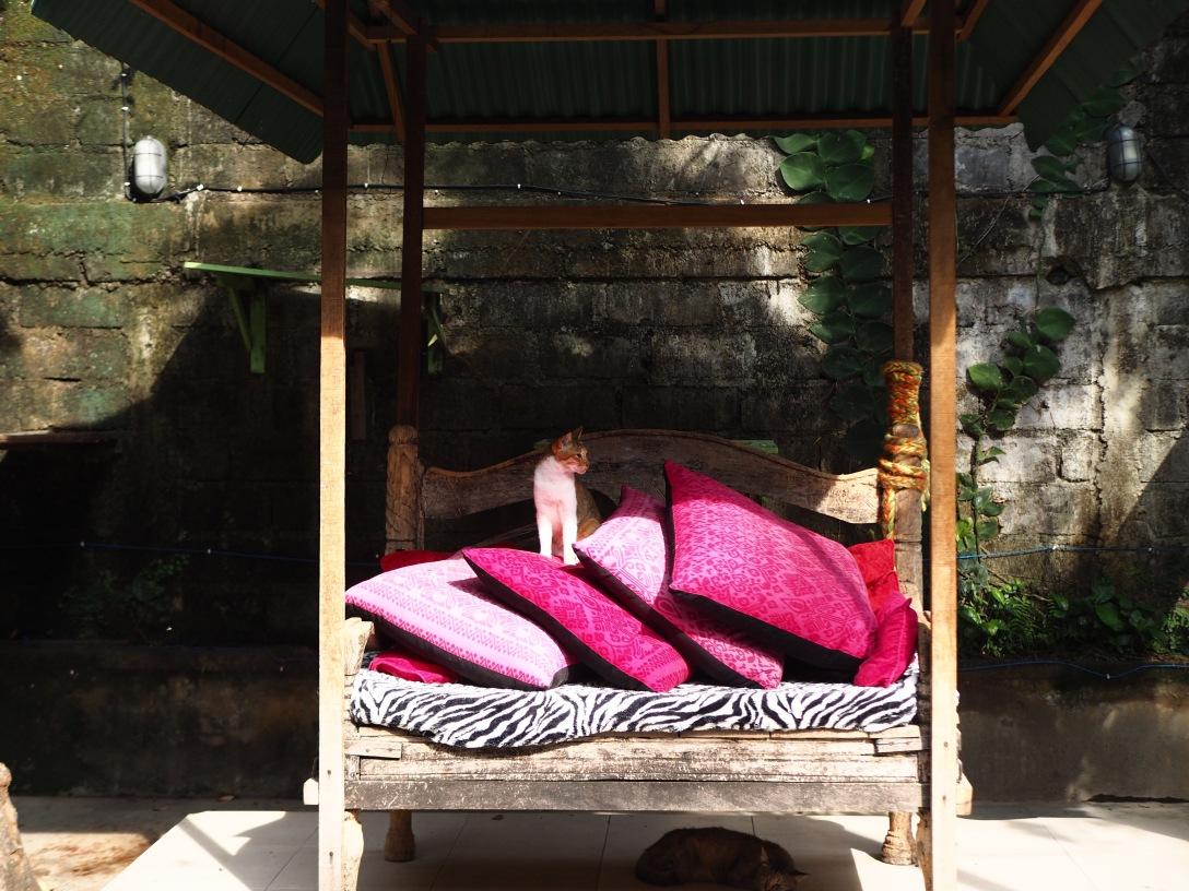 Villa Kitty Foundation in Ubud, Bali