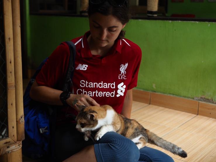 Villa Kitty Foundation